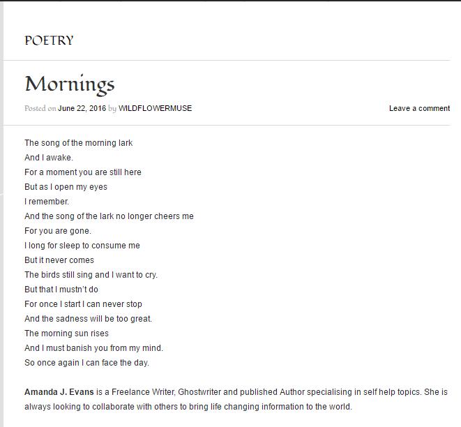 Mornings Amanda J Evans